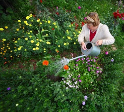 w8 garden planters west kensington